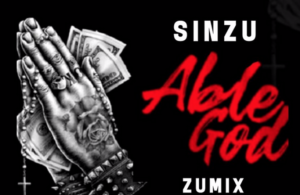"Image result for Sinzu – ""Able God"" (ZuMix)"