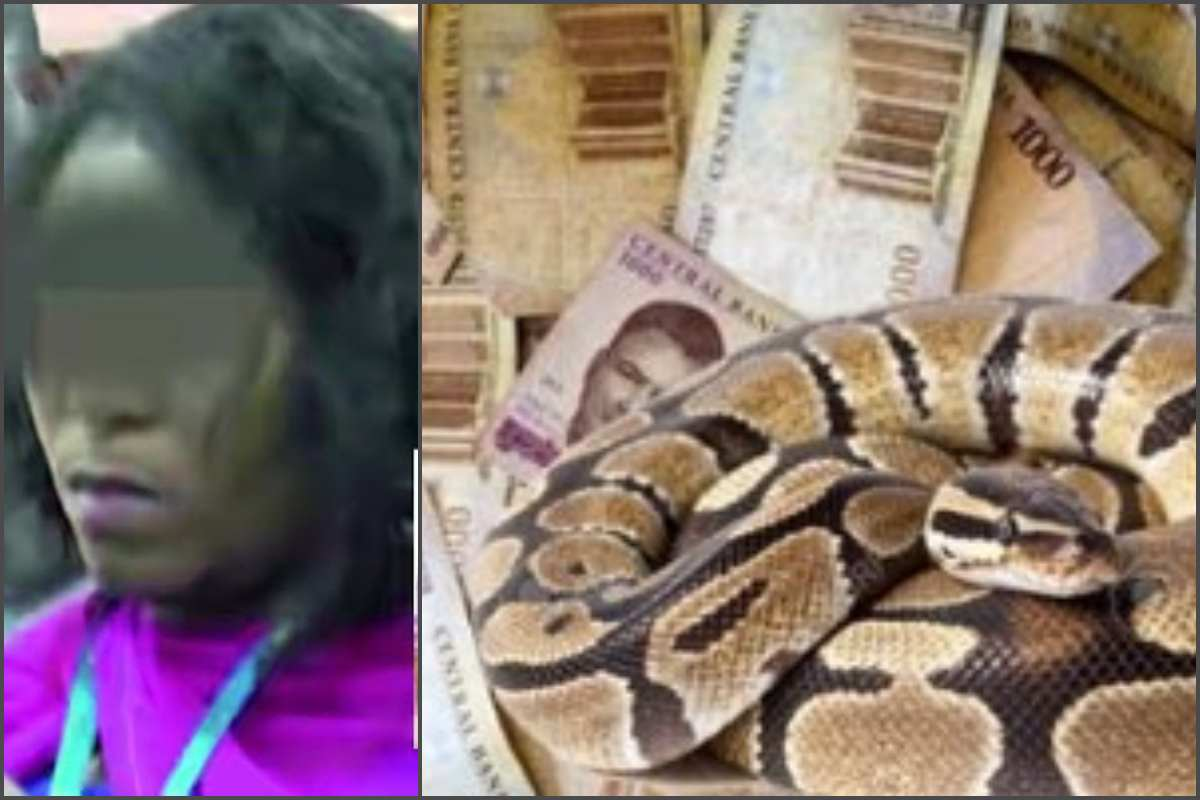 EFCC arraigns woman, 5 others who claim snake swallowed JAMB's N35m - lailasnews