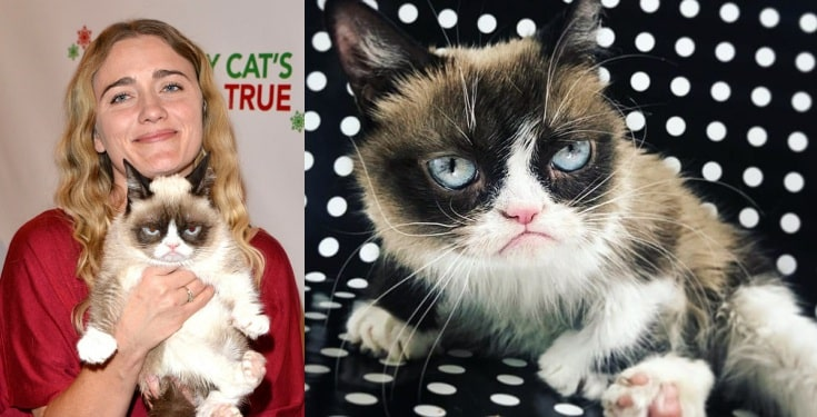 Grumpy Cat, the richest cat in the world with 0 million fortune is dead