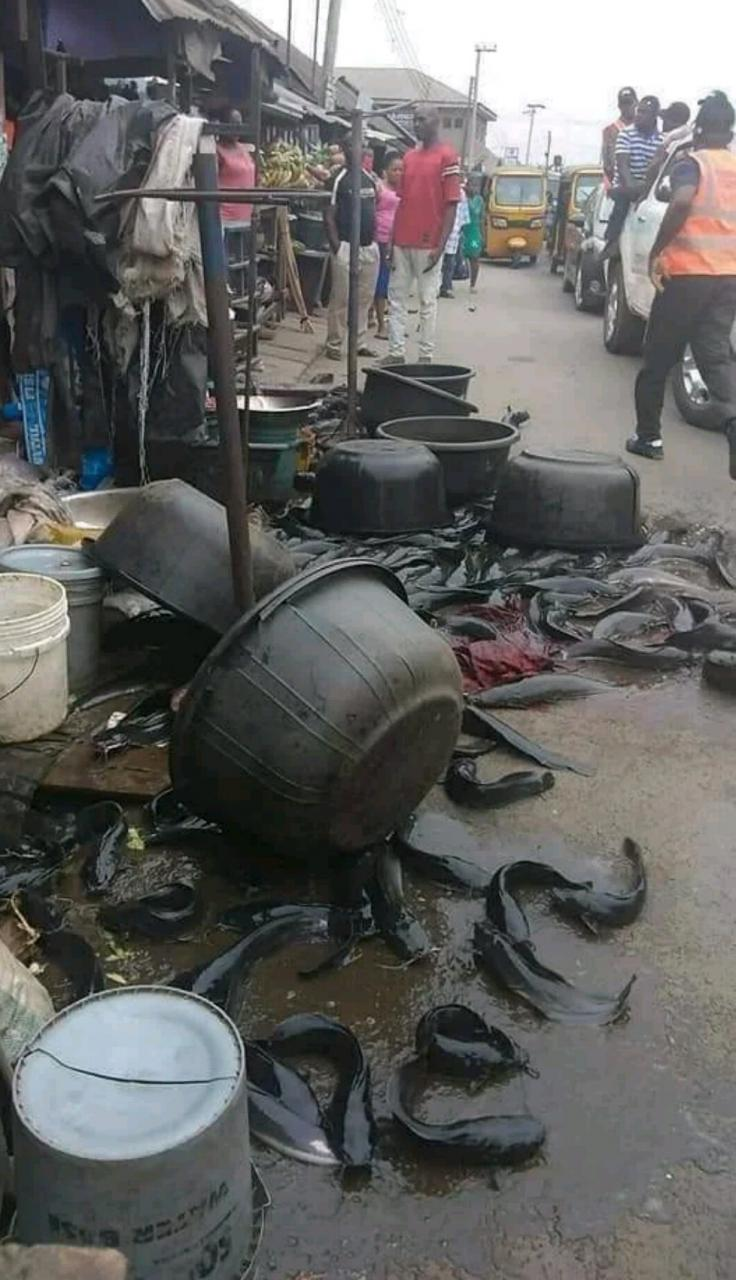 images Rivers State Task Force Pulls Down Illegal Market